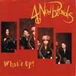 4-non-blondes-whats-up